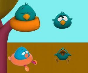 Puzzle Dodoloiseau est un oiseau très somnolent et irritable
