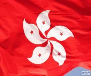 Puzzle Drapeau de Hong Kong