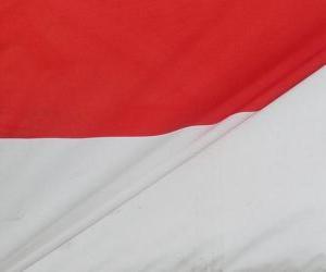 Puzzle Drapeau de l'Indonésie