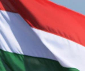 Puzzle Drapeau de la Hongrie