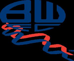 Puzzle Emblème de Bolton Wanderers F.C.