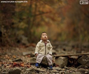 Puzzle Enfant dans la forêt
