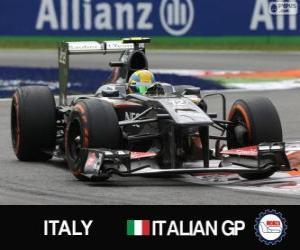 Puzzle Esteban Gutiérrez - Sauber - Monza, 2013