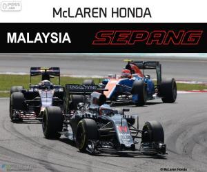 Puzzle F. Alonso, GP de Malaisie 2016