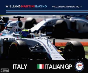 Puzzle F. Massa, GP d'Italie 2015