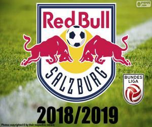 Puzzle FC Salzburg, Bundesliga 2019