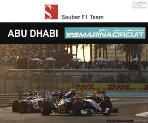 Puzzle Felipe Nasr, GP d'Abou Dabi 2016