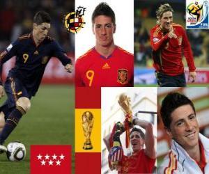 Puzzle Fernando Torres (Il nous faisait rêver) attaquant de l'équipe nationale Espagnol