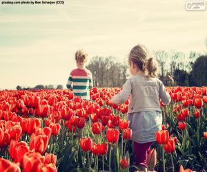 Puzzle Filles entre tulipes