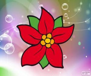Puzzle Fleur de Noël