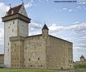 Puzzle Fort d'Hermann, Estonie