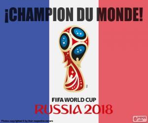 Puzzle France, champion du monde 2018