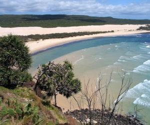Puzzle Fraser Island, l'île de sable est de 122 kilomètres de long et est le plus grand de son genre. Australie.