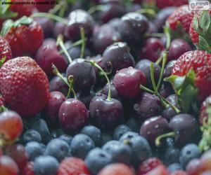 Puzzle Fruits des bois