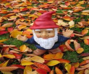 Puzzle Gnome ou nain
