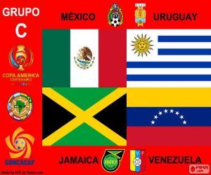 Puzzle Groupe C, Copa América Centenario