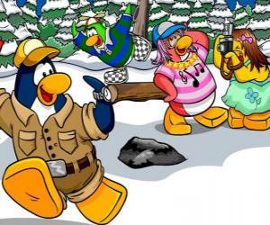 Puzzle Groupe de manchots à passer la journée à l'extérieur en appréciant la neige