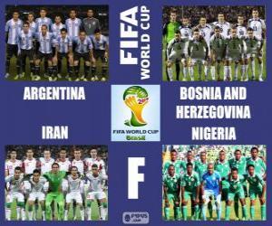 Puzzle Groupe F, Brésil 2014