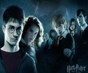 Puzzle Harry Potter avec ses amis