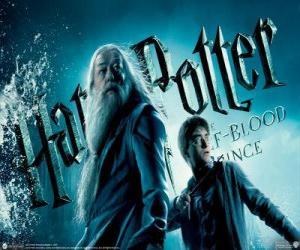 Puzzle Harry Potter et le Prince de sang-mêlé