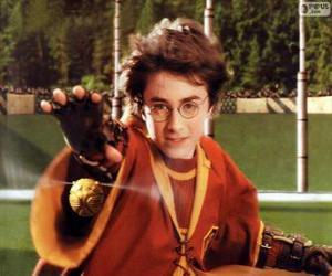 Puzzle Harry Potter, lancer une balle