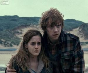 Puzzle Hermione Granger et Ron Weasle