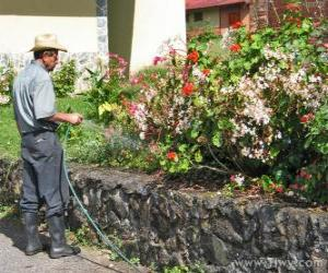 Puzzle Jardinier arrosage au printemps
