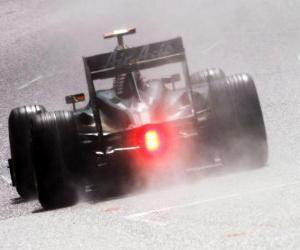 Puzzle Jarno Trulli - Lotus - Spa-Francorchamps 2010