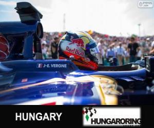 Puzzle Jean-Eric Vergne - Toro Rosso - Hungaroring, 2013