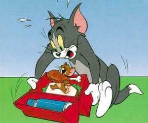 Jeux de puzzle de tom et jerry casse t tes - Tom mange jerry ...