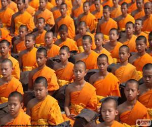 Puzzle Jeunes moines bouddhistes