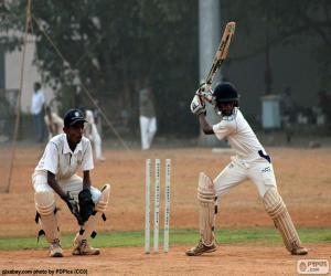 Puzzle Joueurs de cricket