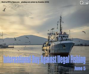 Puzzle Journée internationale de lutte contre la pêche illégale