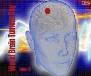 Puzzle Journée internationale des tumeurs cérébrales