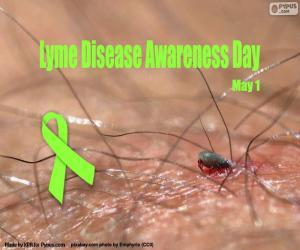 Puzzle Journée mondiale de la maladie de Lyme