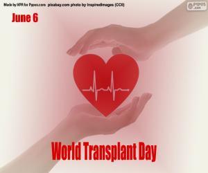 Puzzle Journée mondiale des patients transplantés