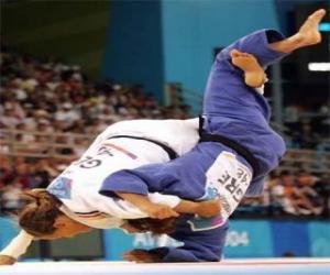 Puzzle Judo - Deux judoka pratiquant