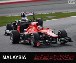 Puzzle Jules Bianchi - Marussia - Sepang 2013