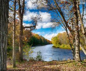 Puzzle Jumbo River, États-Unis