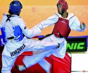 Puzzle Karaté - Deux karateques pratiquant