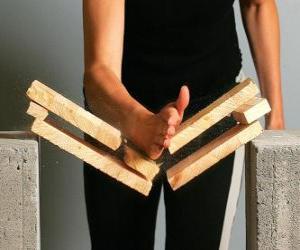 Puzzle Karateca casser un morceau d'un coup avec la main