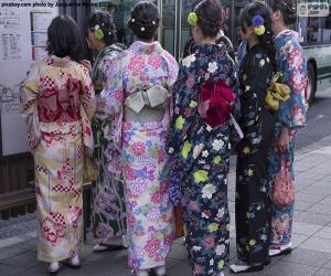 Puzzle Kimono