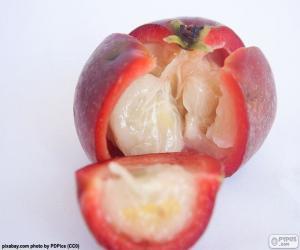 Puzzle Kokam Fruit