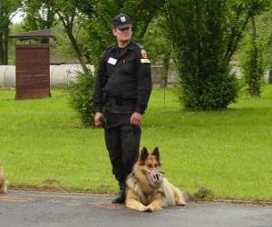 Puzzle L'agent de police avec son chien policier