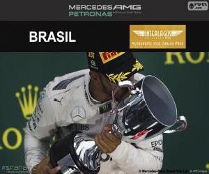 Puzzle L. Hamilton,GP Brésil 2016