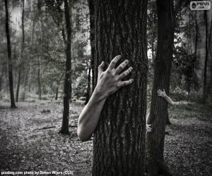 Puzzle La forêt de l'horreur
