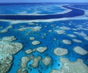 Puzzle La Grande barrière de corail, les récifs coralliens à travers le plus grand monde. Australie.