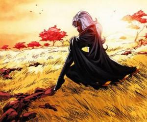 Puzzle La super-héroïne Tornade est un membre de la X-Men, également connu comme le Panthère Noire