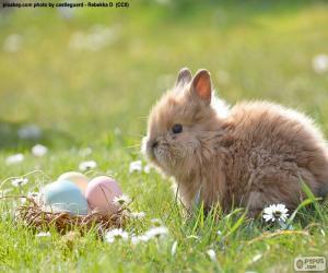 Puzzle Lapin et oeufs de Pâques