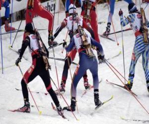 Puzzle Le biathlon dans un sport d'hiver de la combinaison de la Croix-ski pays avec tir à la cible.